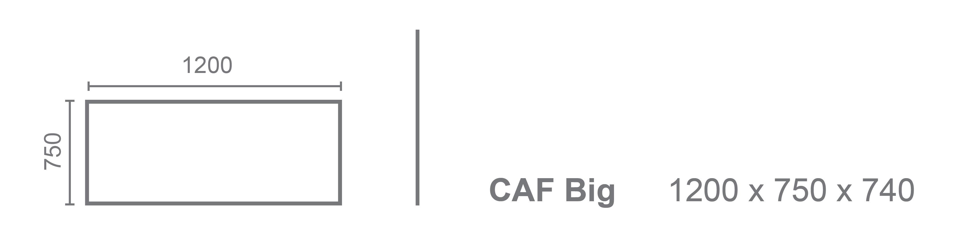 CAF-Big